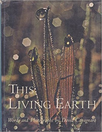 Image for This Living Earth