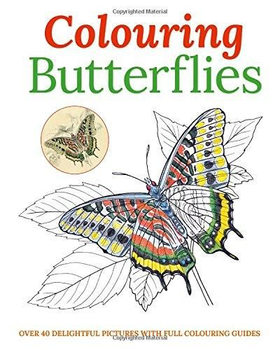 Image for Colouring Butterflies