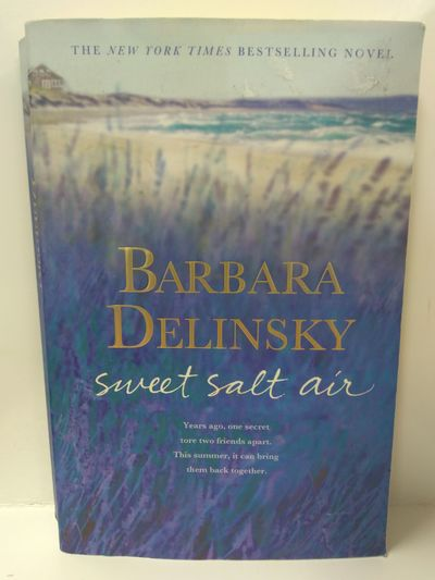 Image for Sweet Salt Air: A Novel
