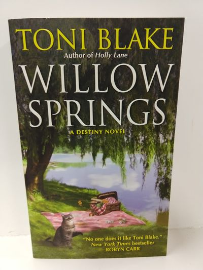 Image for Willow Springs: a Destiny Novel