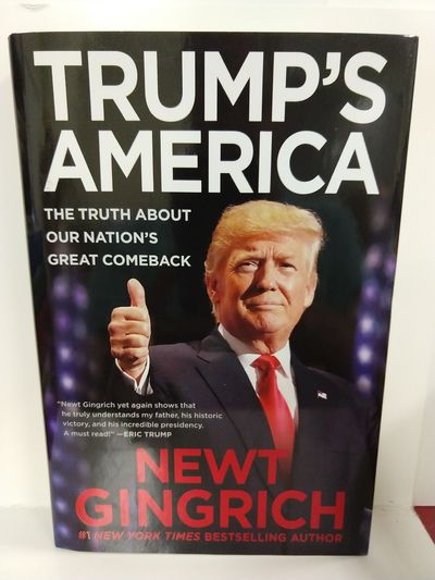 Image for Trump's America: the Truth About Our Nation's Great Comeback